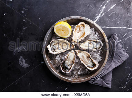 Opened Oysters on metal plate with ice and lemon on dark marble background - Stock Photo