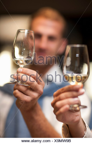 Holding up wine glass to check colour of wine - Stock Photo