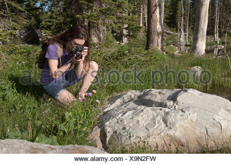 Woman photographing rocks in forest - Stock Photo