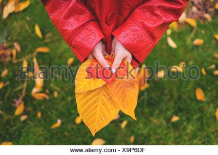 Girl holding autumn leaves - Stock Photo