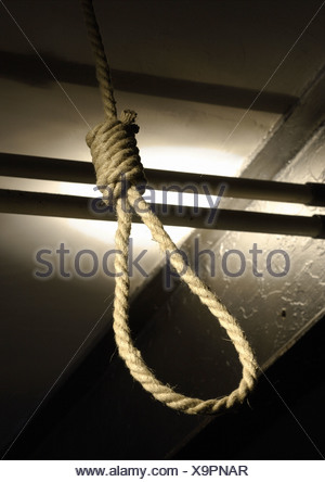 Noose, low angle view - Stock Photo