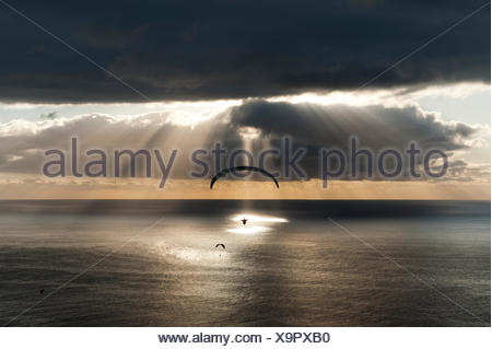 Sun shines behind dark clouds with paraglider over the Atlantic, Puerto Naos, Canary Island of La Palma, Spain - Stock Photo