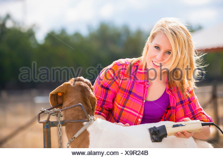 USA, Texas, Teenage girl trimming Boer show goat for stock show on livestock farm - Stock Photo