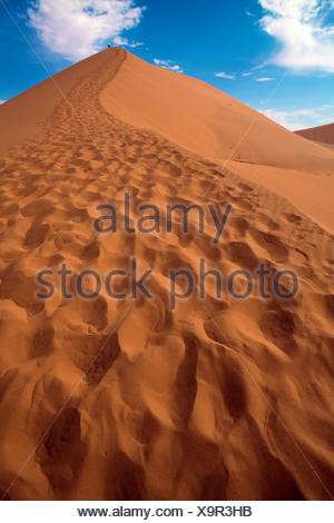 close up of the dune 45 near sossusvlei namibia af - Stock Photo