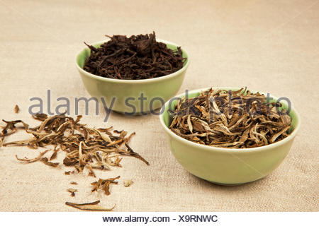 Green and black tea. - Stock Photo