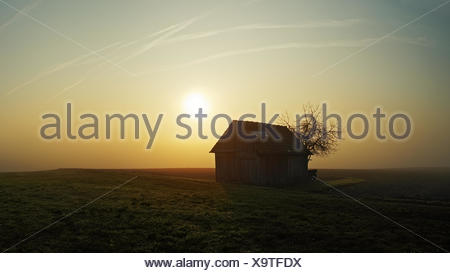 Shed at a Early morning in the haze - Stock Photo