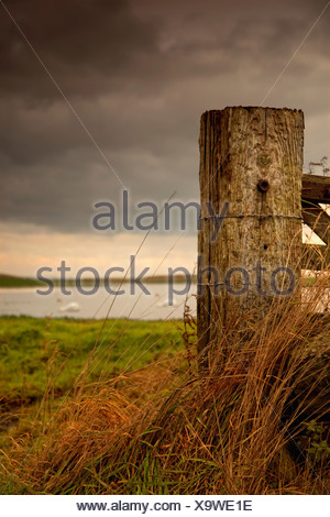Northumberland, England; A Wooden Fence Post And A Pond In A Field - Stock Photo