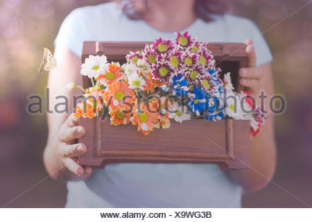 Butterfly flying next to a woman holding box of flowers - Stock Photo