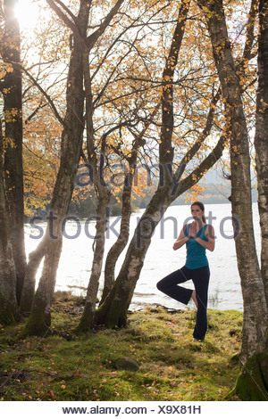 woman practising yoga position amongst trees - Stock Photo