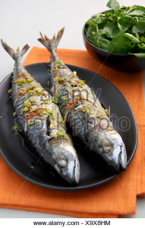 Grilled mackerel with chilli and spring onions - Stock Photo