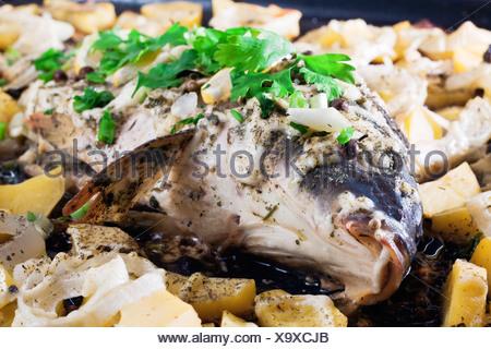Roasted carp - Stock Photo