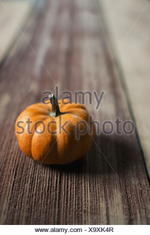 A small round pumpkin or squash vegetable with a bright orange skin on a wooden tabletop - Stock Photo