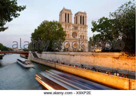 Cathedral Notre-Dame de Paris in the last evening light, on the Île de la Cité and the Seine, Paris, Ile-de-France, France - Stock Photo