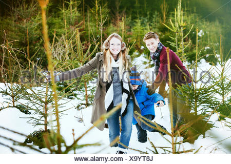 Family searching for the perfect Christmas tree - Stock Photo