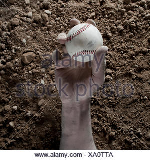 Studio close up of man's hand holding baseball - Stock Photo