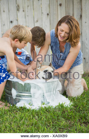 A family in their garden, washing a dog in a tub. - Stock Photo