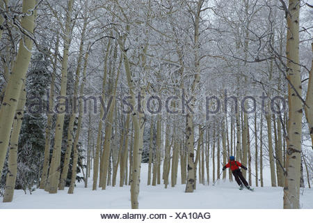A teen boy downhill skiing through the trees on a stormy day. - Stock Photo