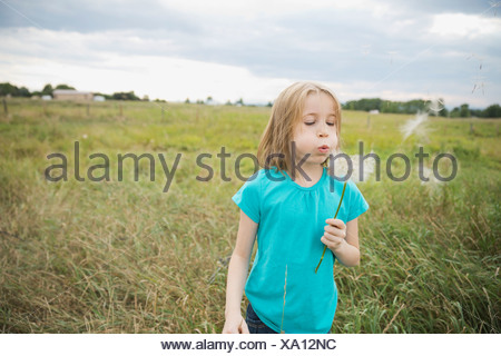 Girl blowing Tragopogon seeds outdoors - Stock Photo