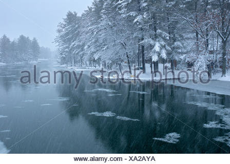 Snow Squall in Cottage country on the Severn river, Muskoka Ontario - Stock Photo