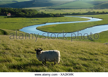 Seven Sisters Country Park, Cuckmere Haven, Sussex, England, UK - Stock Photo