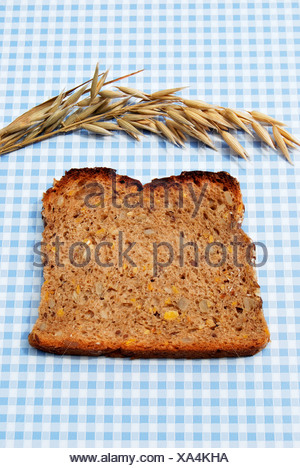 Single slice of bread, wholemeal bread with pumpkin and sunflower seeds on blue and white tablecloth, with oats - Stock Photo