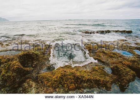 Waves Crash Through A Blow Hole Spout, Oahu, Hawaii, America, USA - Stock Photo