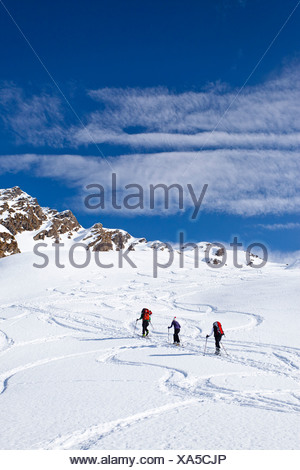 Ski mountaineers during ascent to Mt Staudenberg Joechl in Ridnaun above Schneeberg, Sterzing, Mt Staudenberg Joechl at back - Stock Photo