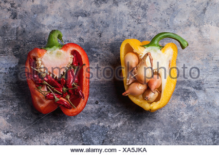 Half of raw red and yellow peppers stuffed by little onions and red hot chili peppers over vintage background. - Stock Photo