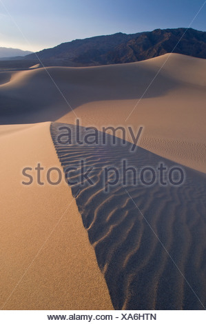 Sand dunes in Death Valley National Park, California, USA - Stock Photo