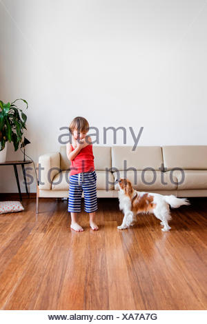 Little boy playing with his dog in the living room - Stock Photo