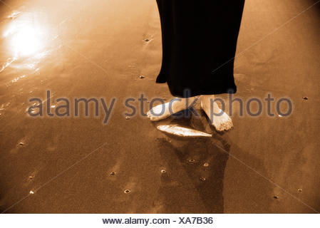 Woman standing next to dead fish on beach - Stock Photo