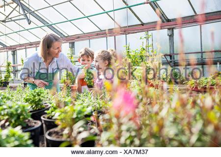 Female gardener and children in greenhouse - Stock Photo