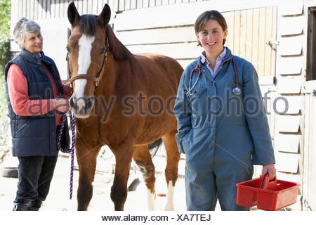 horse ranch,veterinarian,veterinary visit - Stock Photo