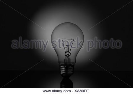 Big light bulb standing on reflective surface - Stock Photo