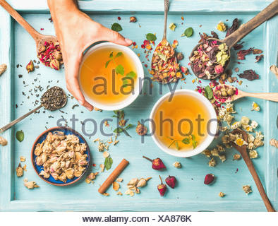 Two cups of healthy herbal tea with mint, cinnamon, dried rose and camomile flowers in different spoons and woman's hand holding - Stock Photo