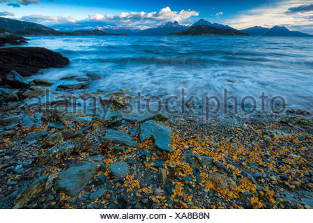 South America,Tierra del Fuego,Argentina,Ushuaia,Tierra del Fuego,National Park,Beagle Channel - Stock Photo