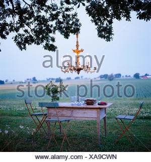 A laid table and a tree, Skane, Sweden. - Stock Photo