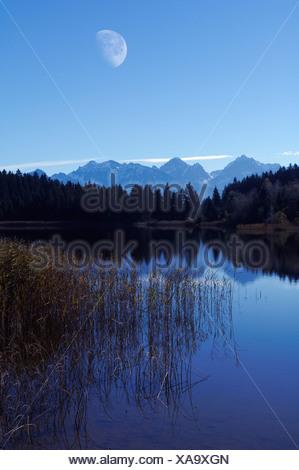 Hegratsrieder See, lake, near Buching, Allgaeu, Bavaria, Germany, Europe - Stock Photo