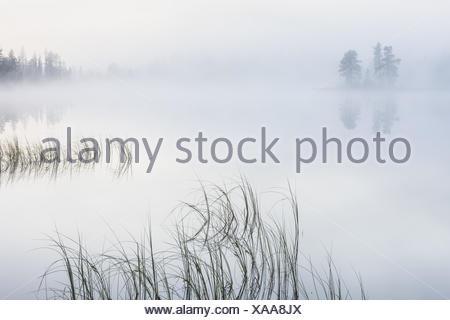morning fog on a lake, Lapland, Sweden - Stock Photo