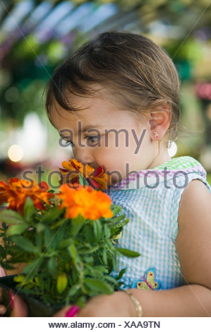Young girl smelling marigold flowers in plant nursery, close up - Stock Photo