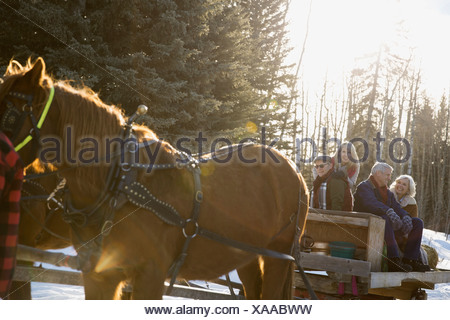 Friends riding on horse-drawn sleigh - Stock Photo
