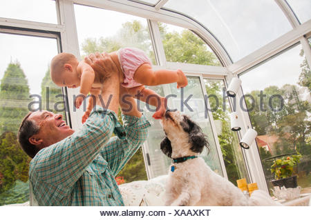 Grandfather holding up baby granddaughter in conservatory - Stock Photo