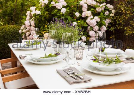 Deutschland, Garten, Terrasse, Holzdeck, Gartenmöbel, moderne Sitzgruppe, gedeckter Tisch, festlich, Tischdeko Lavendel, Hortensie (Hydrangea), Buchsb - Stock Photo