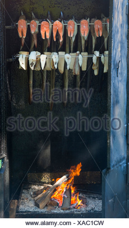 Fish in a smoker or smokehouse, Prerow, Darß, Mecklenburg-Western Pomerania, Germany - Stock Photo