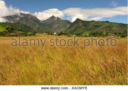 Landscape, Volcan Baru, Panama, Central America, field - Stock Photo