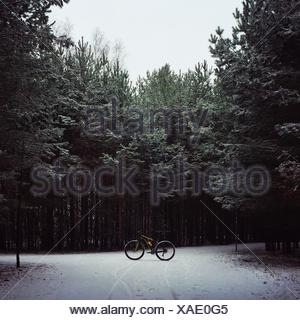 Bicycle Parked On Snow Covered Field Against Trees In Forest - Stock Photo