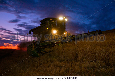 Agriculture - A John Deere combine harvests wheat at dusk in the Palouse region / near Pullman, Washington, USA. - Stock Photo