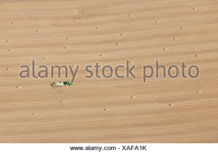Aerial view of tractor at work in crop fields - Stock Photo