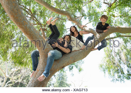 Portrait of family with two boys climbing on park tree - Stock Photo