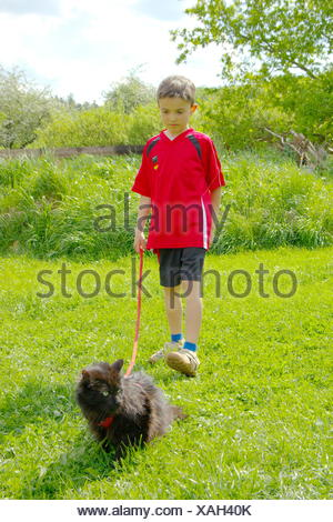Walk - Stock Photo